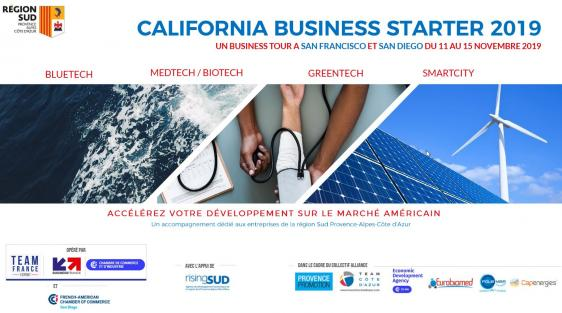 California Business Starter 2019
